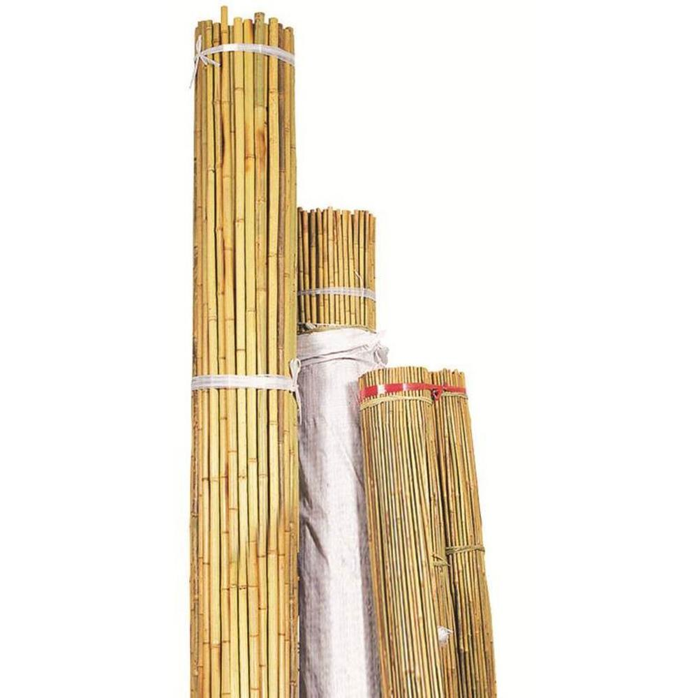 Backyard x scapes 1 in x 8 ft black bamboo poles 25 for Uses for bamboo canes