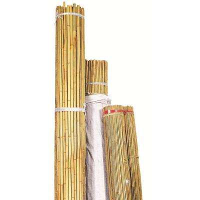 12 ft. x 1-1/4 in. Natural Bamboo (Package of 25)