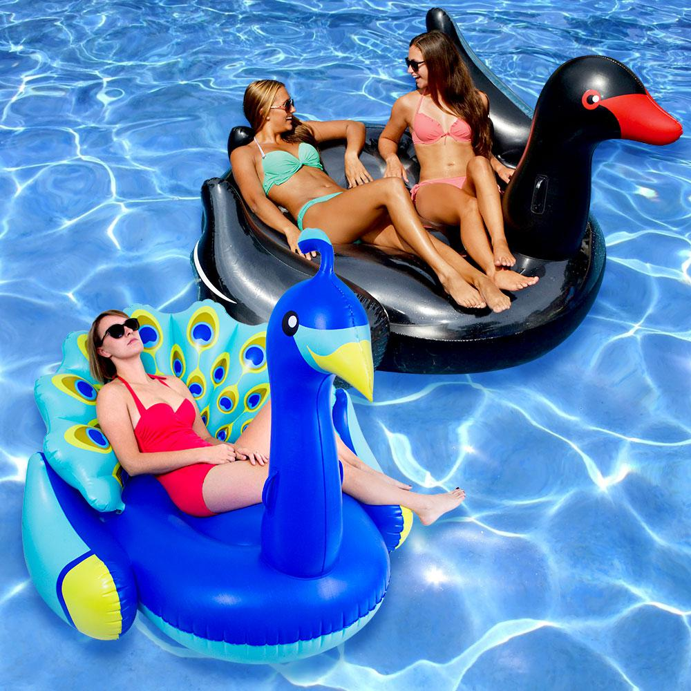 Swimline giant peacock and black swan swimming pool float for Pack swimming