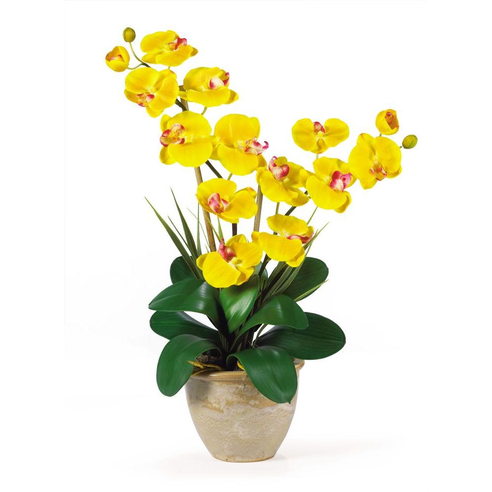Nearly Natural 25 in. Double Stem Phalaenopsis Silk Orchi...