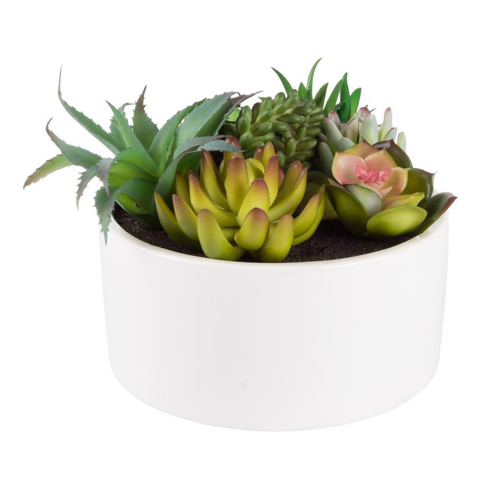6 in. Artificial Succulent Plant Arrangement in White Glazed Ceramic Pot