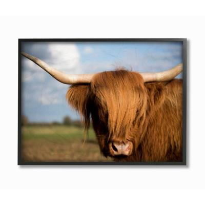 "16 in. x 20 in. ""Cow in Pasture Landscape Photo"" by Villager Jim Framed Wall Art"