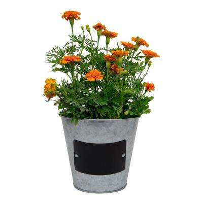 7.5 in. Metal Tin Planter with Chalkboard