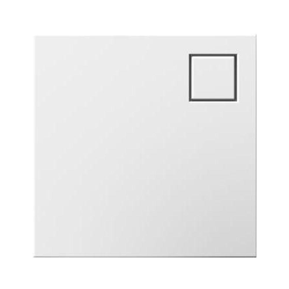Legrand adorne Removable Night Light   Flash LightLegrand adorne Removable Night Light   Flash Light AARNL2   The  . Adorne Lighting Control. Home Design Ideas