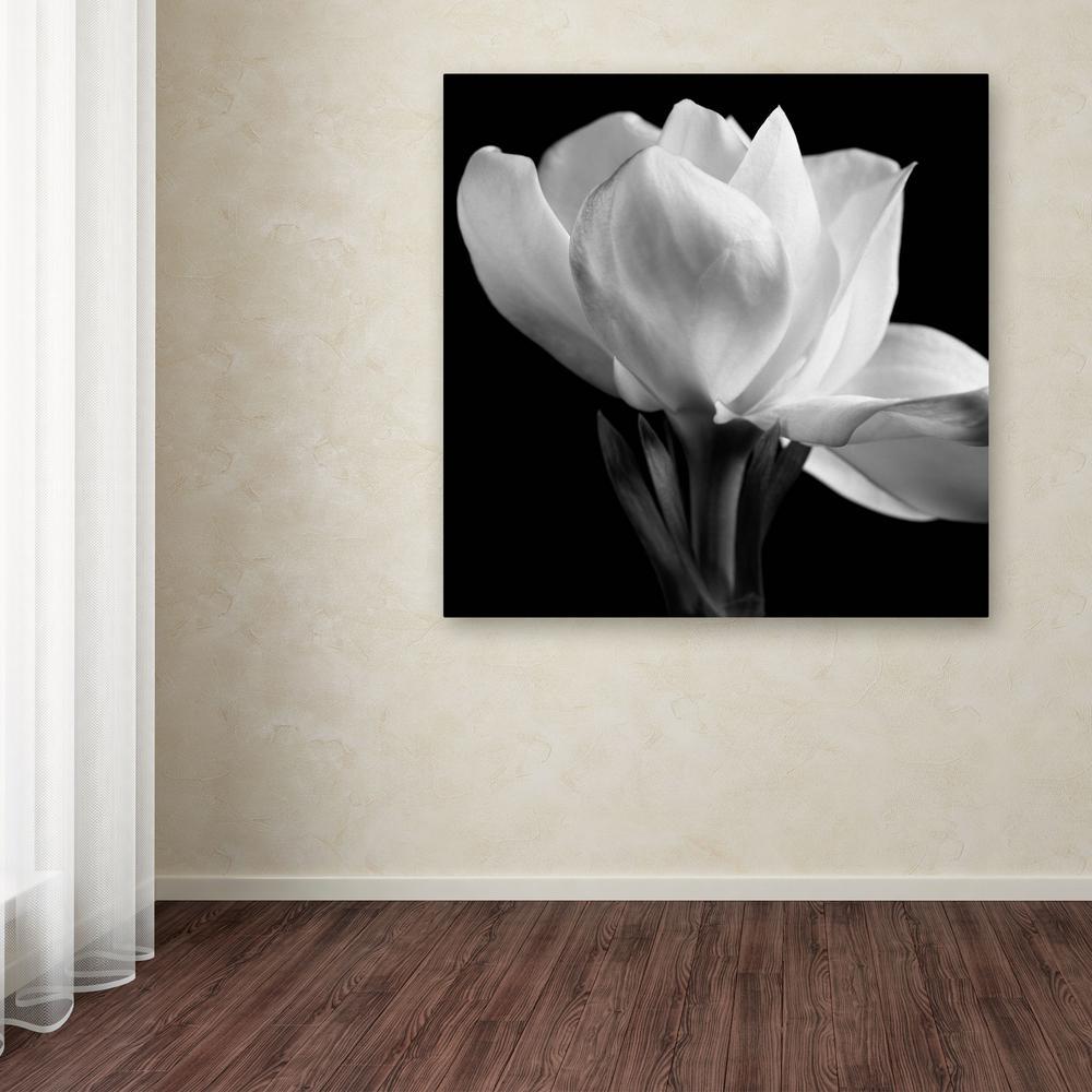 "35 in. x 35 in. ""Gardenia"" by Michael Harrison Printed Canvas Wall Art"