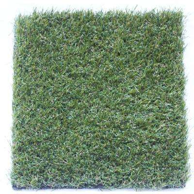 TruGrass Emerald Gold 12 ft. Wide x Cut to Length Artificial Grass