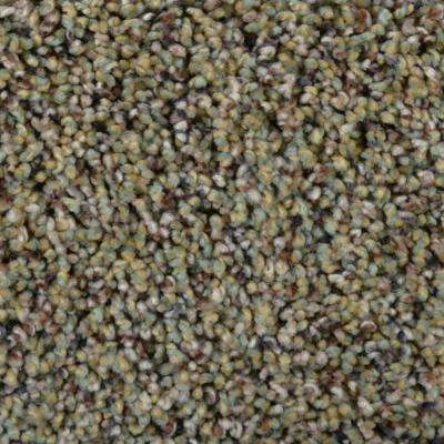 Carpet Sample - Madison I - Color Avondale Texture 8 in. x 8 in.
