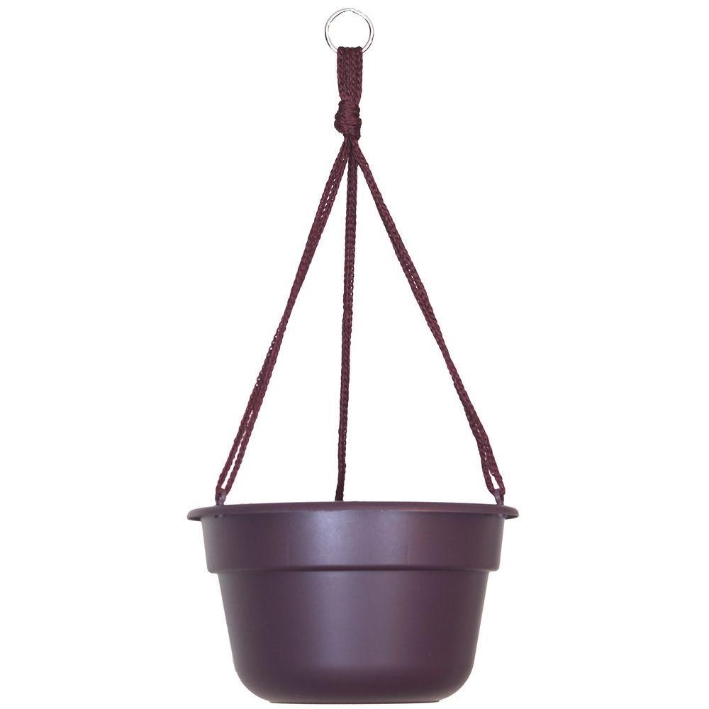 10 in. x 6 Exotica Dura Cotta Plastic Hanging Basket Planter