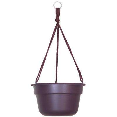10 in. x 6 Exotica Dura Cotta Plastic Hanging Basket Planter