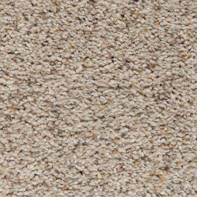 Carpet Sample - Riley I - Color Windemere Textured 8 in. x 8 in.