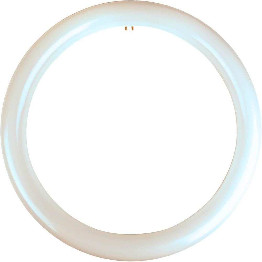 32-Watt Equivalent Cool White T9 Circline Non-Dimmable LED Light Bulb