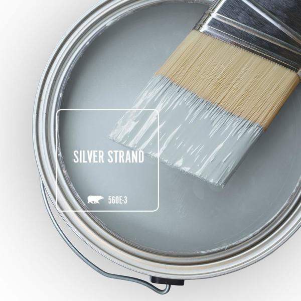 Reviews For Behr Ultra 1 Gal 560e 3 Silver Strand Flat Exterior Paint And Primer In One 485001 The Home Depot