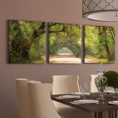 "20 in. x 60 in. ""Green Pathway"" Printed Canvas Wall Art"