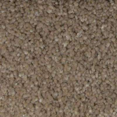 Carpet Sample - Spicework I - Color Rapid City Texture 8 in. x 8 in.