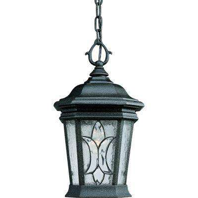 Cranbrook Collection 1-Light Gilded Iron Outdoor Wall Lantern