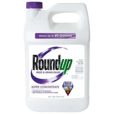Weed and Grass Killer 1 Gal. 50% Super Concentrate