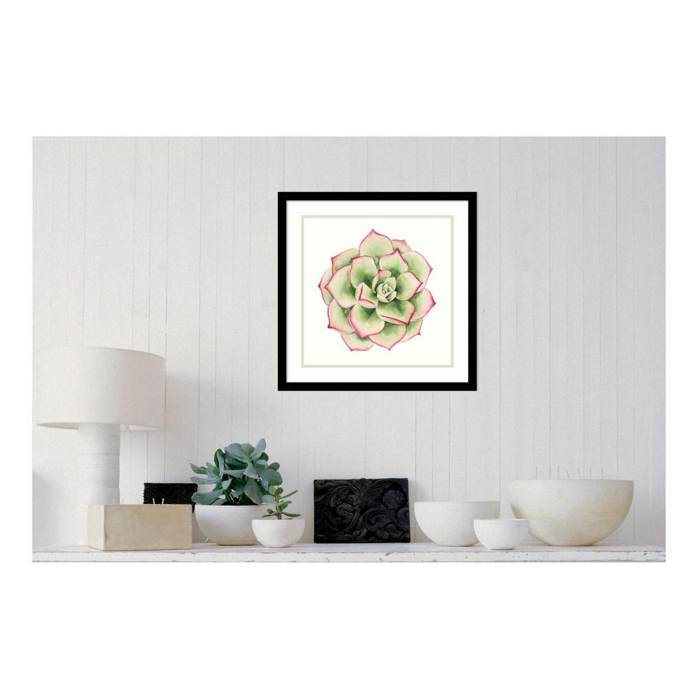 "21 in. H x 21 in. W ""Tropical Plant 4"" by "" Grace Popp"" Framed Print Wall Art"
