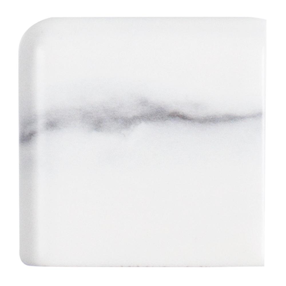Carrara Inkjet White 2 in. x 2 in. Matte Ceramic Wall Double Bullnose Tile