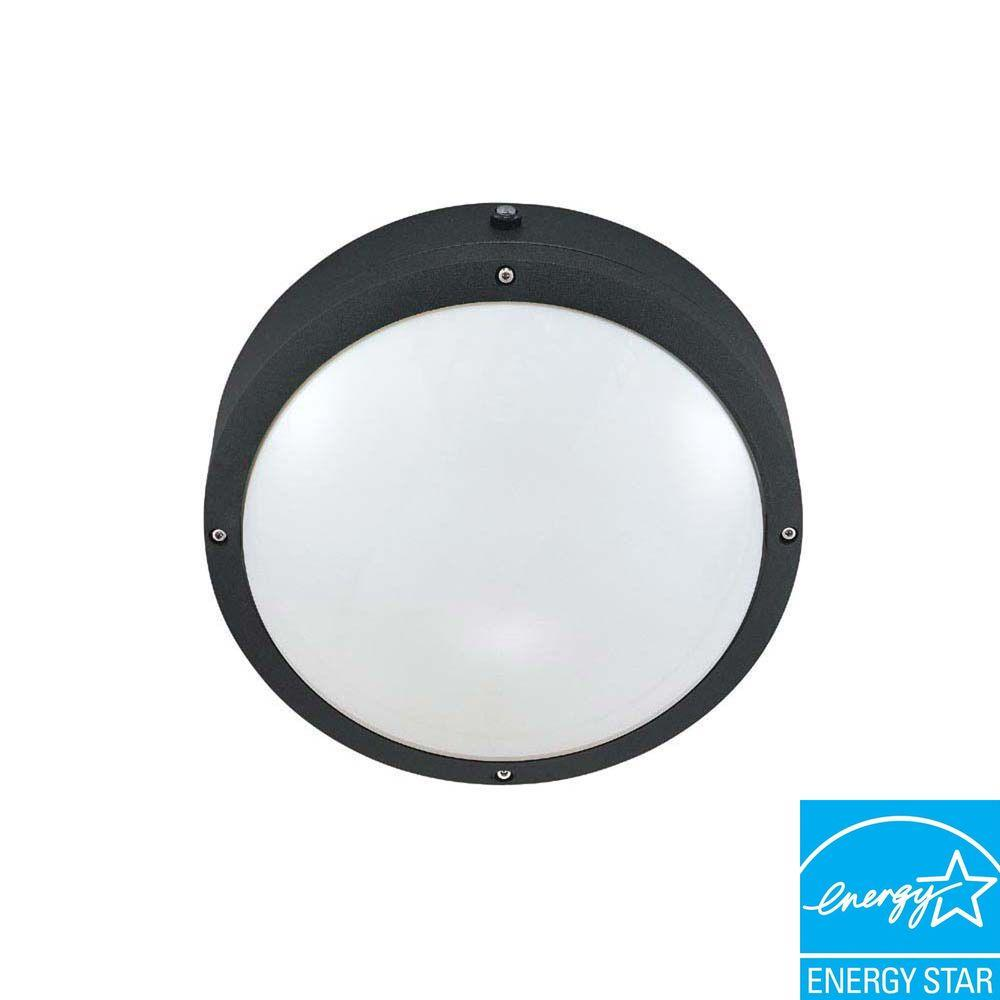 Green Matters Wall/Ceiling 2-Light Outdoor Matte Black Fixture