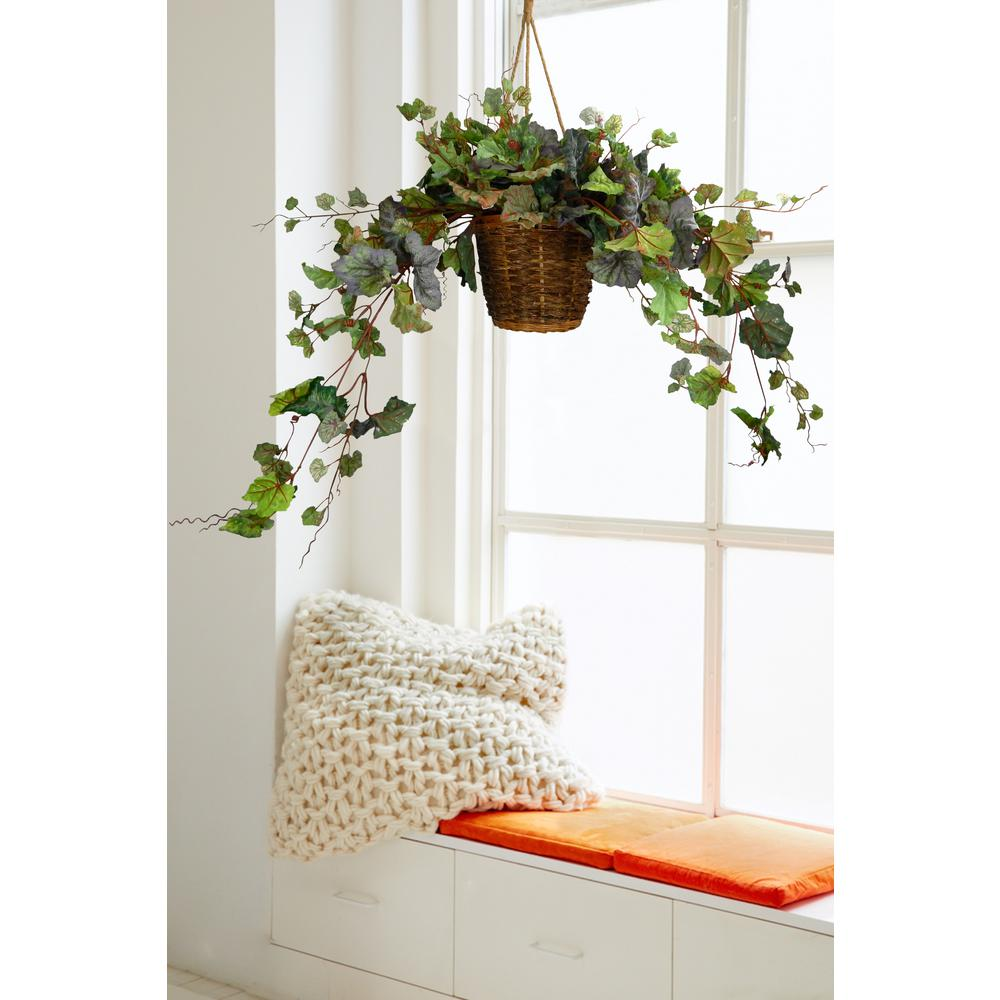 Lush and Green Hanging Grapevine with Basket