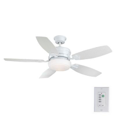 Molique 54 in. Indoor/Outdoor White Ceiling Fan with Light Kit and Wall Control
