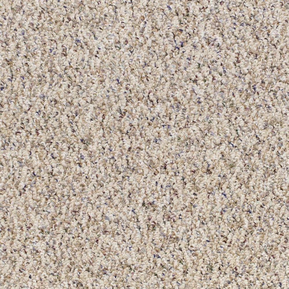 Speeding - Color Tender Beige Loop 12 ft. Carpet