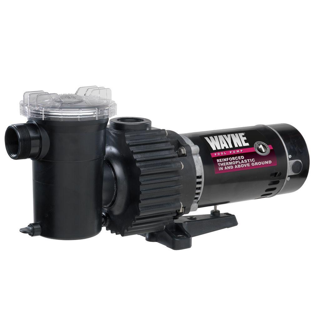 Wayne 1.5 HP Pool Pump