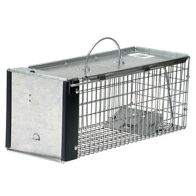 X-Small 1-Door Professional Live Animal Cage Trap for Rat, Squirrel, Chipmunk, and Weasel