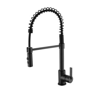 Single-Handle Pull-Down Sprayer Kitchen Faucet with 2-Function Sprayhead in Matte Black