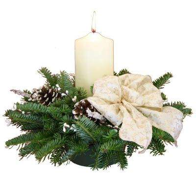 Balsam Fir Winter Elegance Pillar Candle Fresh Centerpiece : Multiple Ship Weeks Available