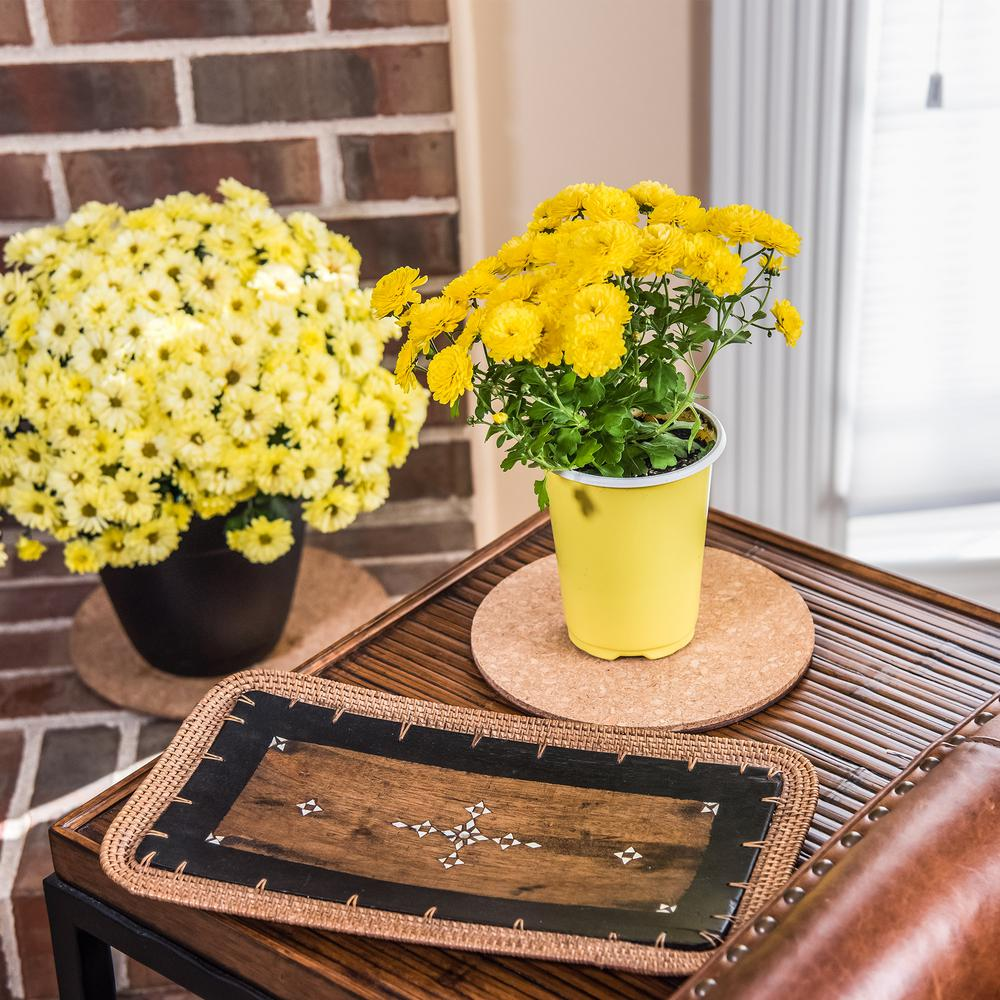 6pk Indoor Plant Mats for Plastic or Ceramic Flower Pot Trivet Floor Planter Set