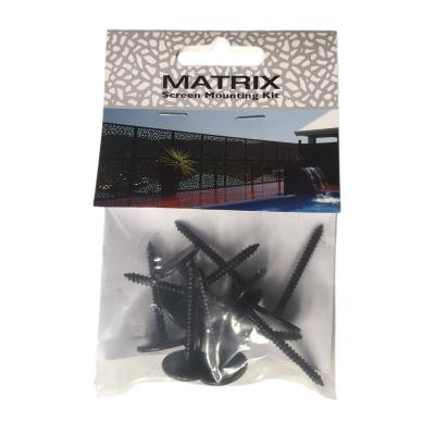 10 Pack Matrix Mounting Screws