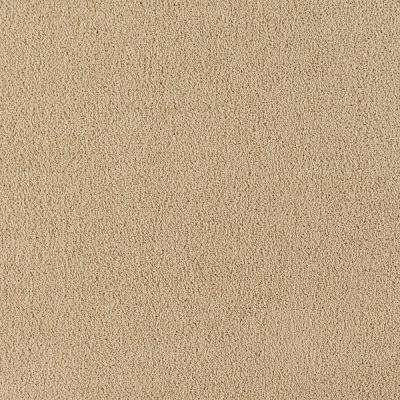 Carpet Sample - Collinger I Color - Blessing Texture 8 in. x 8 in.