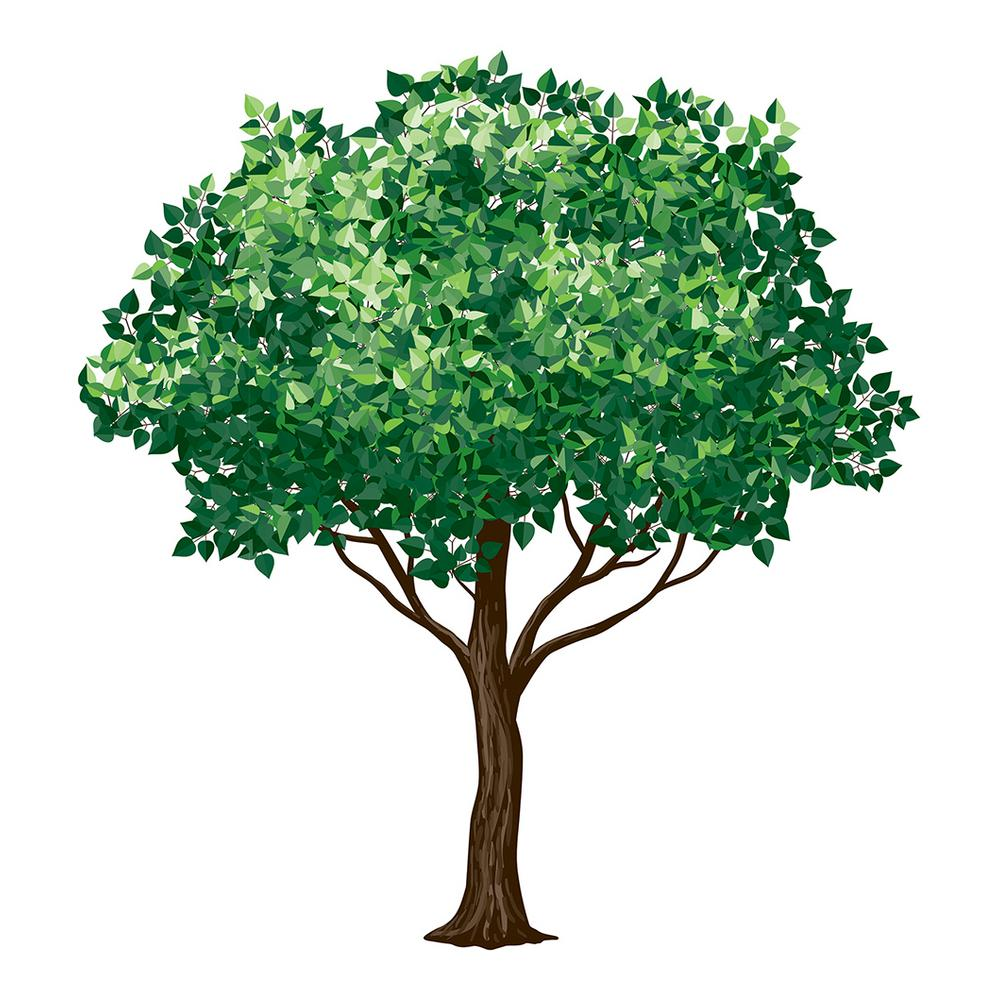 Brewster 110.2 in. x 39.4 in. Tree Wall Decal, Green