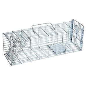 JT Eaton Answer Single Door Live Animal Cage Trap for Small Size Pests Steel... by JT Eaton