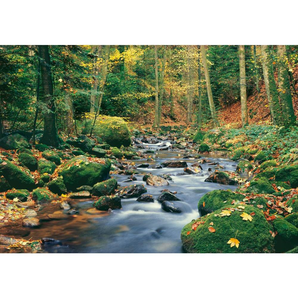 Ideal decor 100 in x 144 in forest stream wall mural dm278 the forest stream wall mural dm278 the home depot amipublicfo Choice Image
