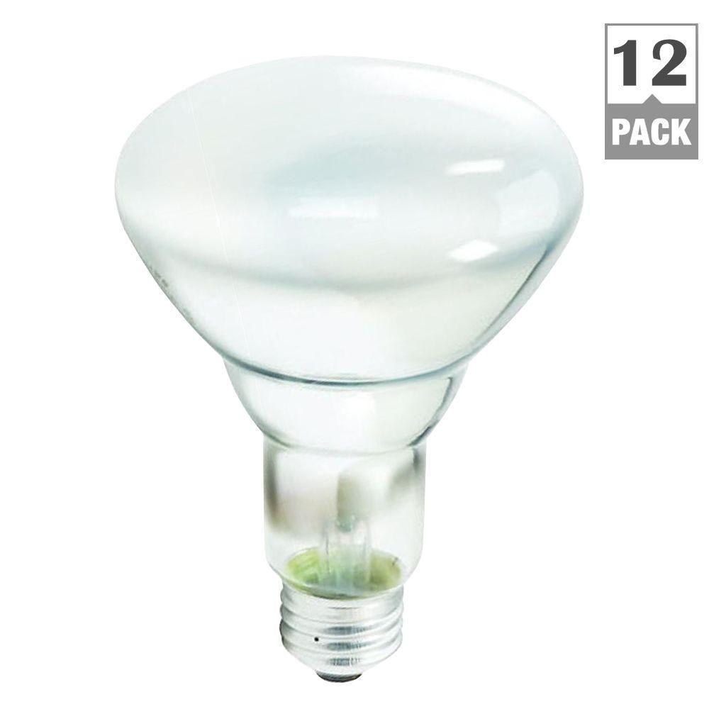 Philips 65 Watt Incandescent Br30 Flood Light Bulb 12 Pack Per Case 248872 The Home Depot
