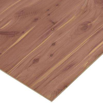 1/4 in  x 2 ft  x 8 ft  PureBond Aromatic Cedar Plywood Project Panel (Free  Custom Cut Available)