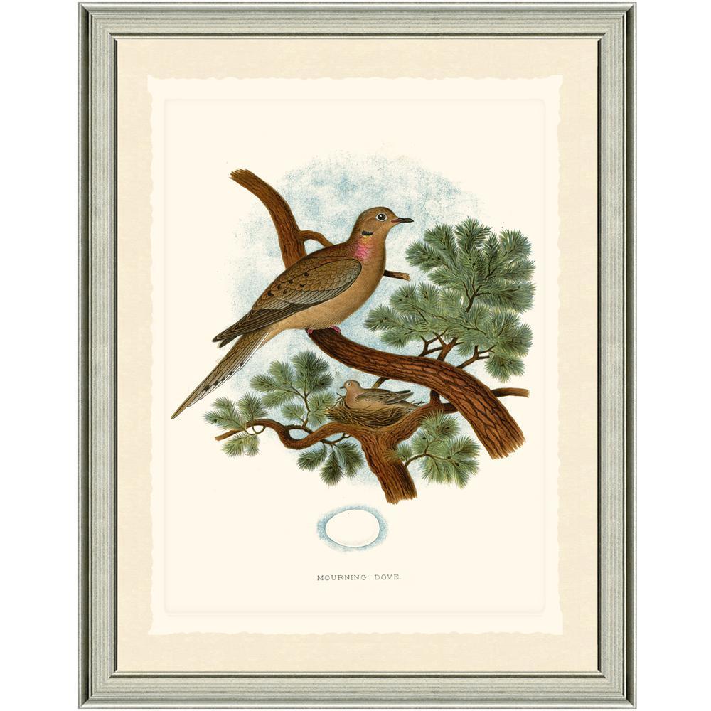 Dove Framed Paper Wall Art (16x20)
