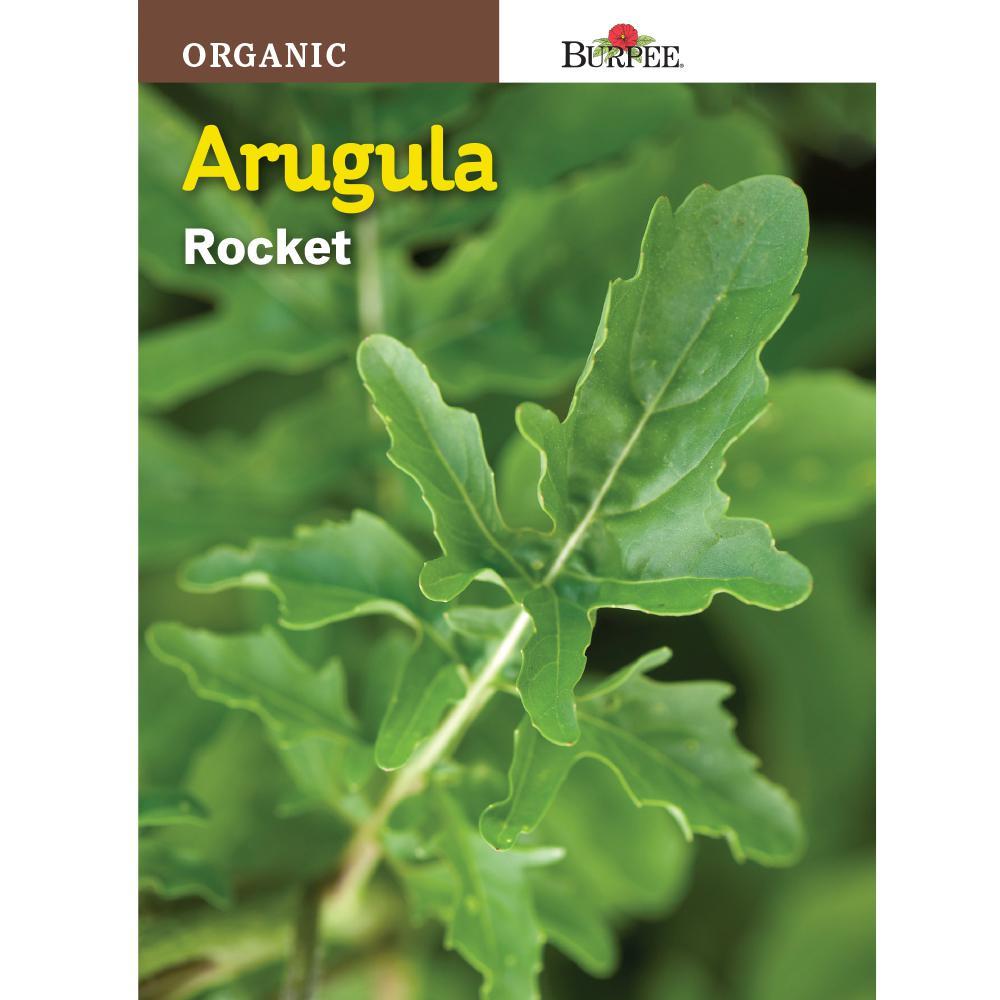 Arugula Organic Seed