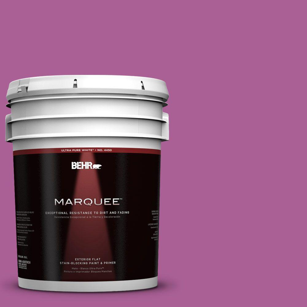 BEHR MARQUEE 5-gal. #680B-6 Exotic Bloom Flat Exterior Paint