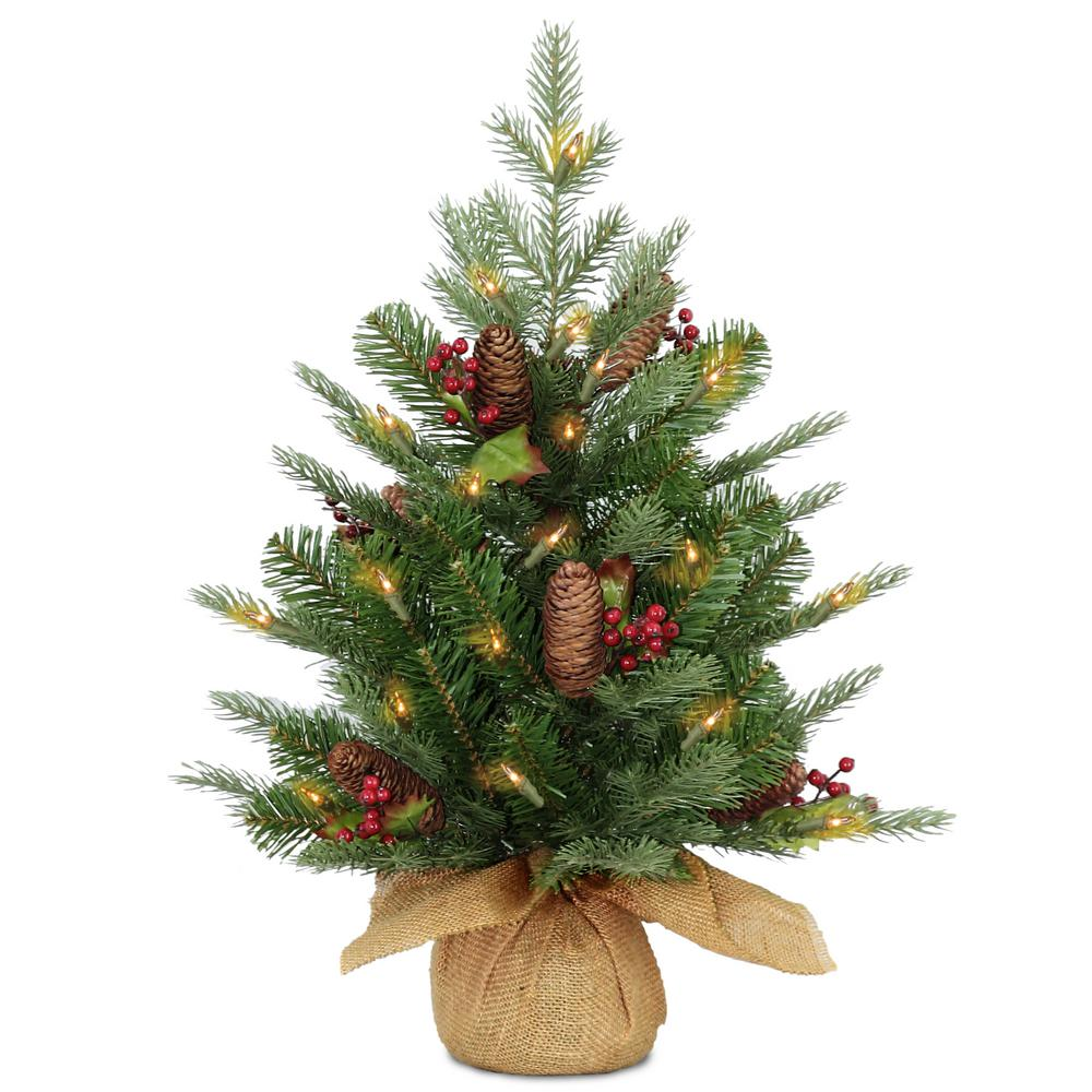 Pre Lit Outdoor Christmas Trees Battery Operated.National Tree Company 2 Ft Battery Operated Nordic Spruce Artificial Christmas Tree With Warm White Led Lights