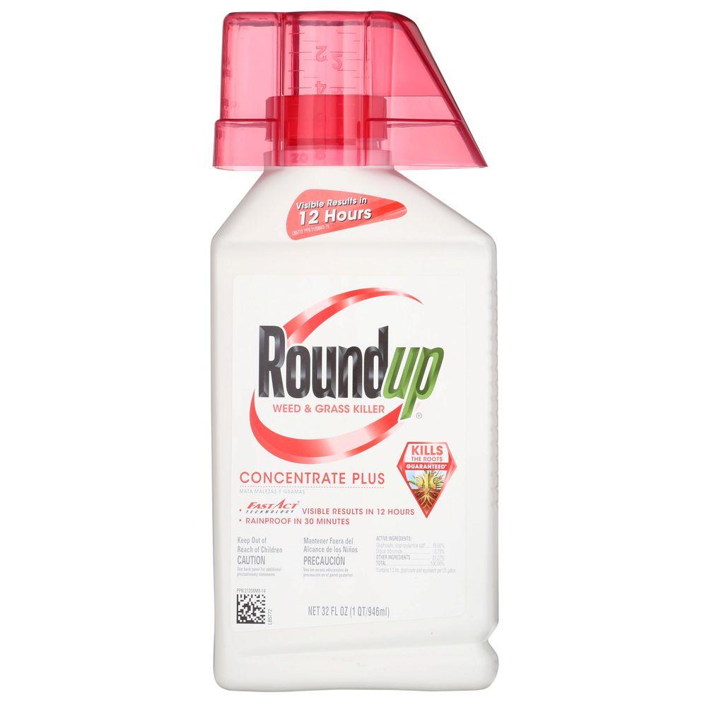 Roundup 32 Oz Concentrate Weed And Grass Killer