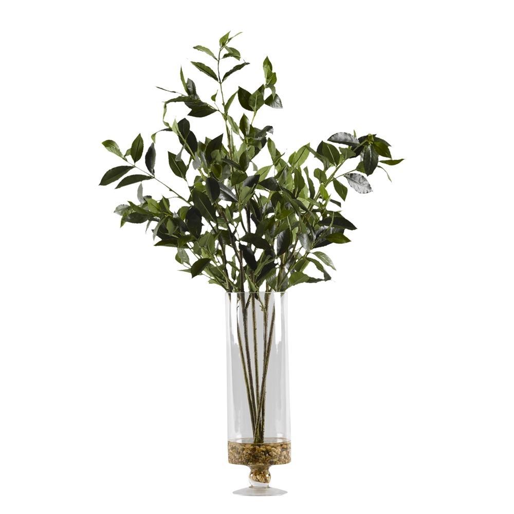 Indoor Bayleaf Branches in Glass Pedestal Vase