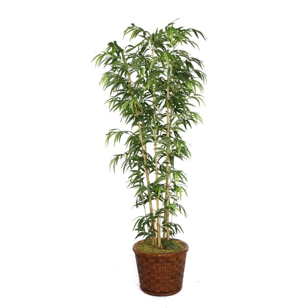 77 in. Tall Natural Bamboo Tree in 17 in. Fiberstone Planter