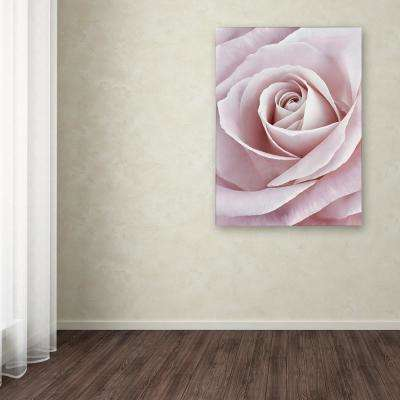 """24 in. x 18 in. """"Pink Rose"""" by Cora Niele Printed Canvas Wall Art"""