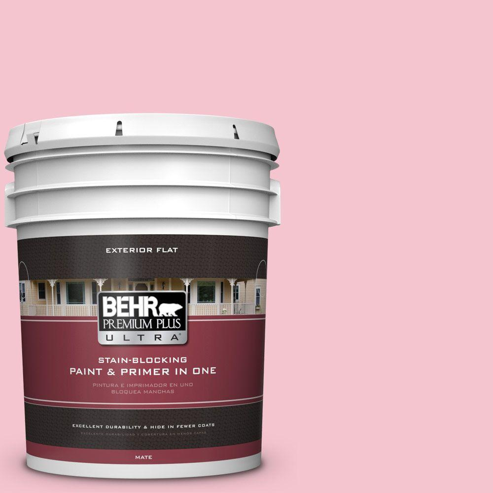 BEHR Premium Plus Ultra 5-gal. #P150-2 Energetic Pink Flat Exterior Paint
