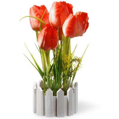 11 in. Potted Red Tulips