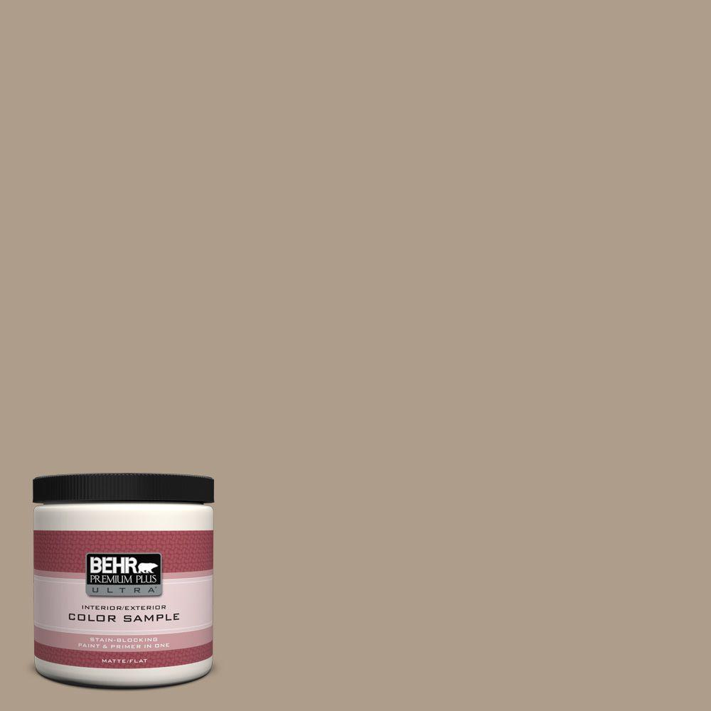 8 oz. #BNC-14 Over the Taupe Interior/Exterior Paint Sample