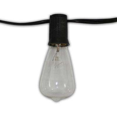 Edison Vintage 24-Light 48 ft. String Light With Clear Antique Bulbs